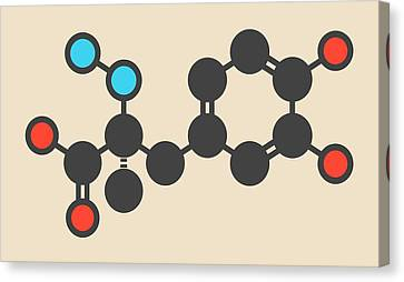 Carbidopa Parkinson's Drug Molecule Canvas Print by Molekuul