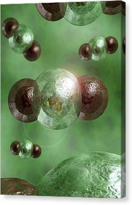 Carbon Dioxide Molecules Canvas Print by Crown Copyright/health & Safety Laboratory Science Photo Library