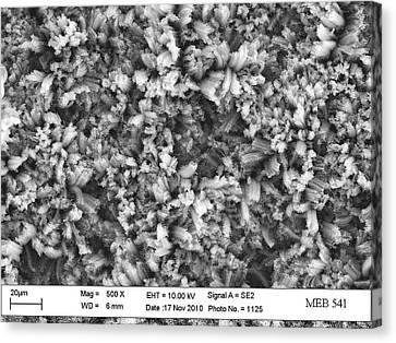 Carbon Nanotube Material Canvas Print by Stephanie Getty, Nasa Goddard