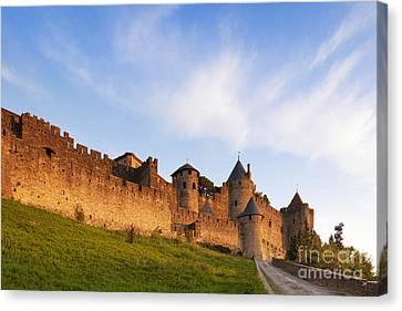 Carcassonne Languedoc Roussillon France Canvas Print