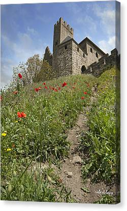Carcassonne Poppies Canvas Print by Robert Lacy