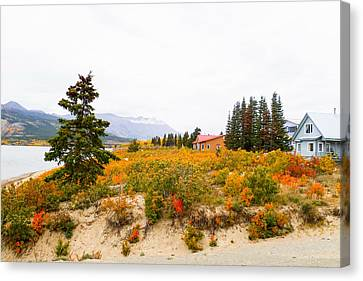 Carcross Bungalows Canvas Print by David Nichols