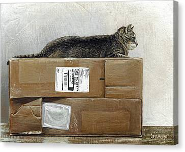 Cardboard Queen Test Canvas Print by Cara Bevan