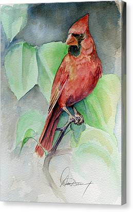 Cardinal #1 Canvas Print by Don Dane