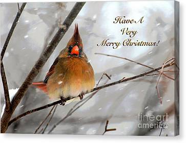Cardinal In Snow Christmas Card Canvas Print by Lois Bryan