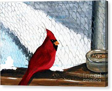 Cardinal In The Dogpound Canvas Print by Barbara Griffin