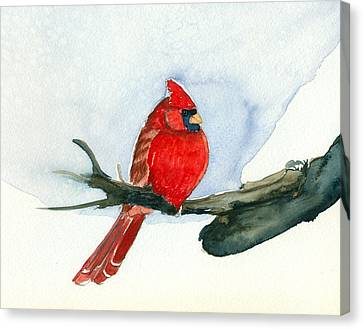 Cardinal Canvas Print by Katherine Miller