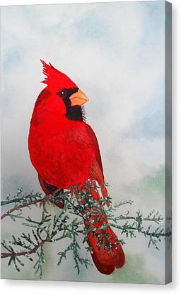 Canvas Print featuring the painting Cardinal by Laurel Best