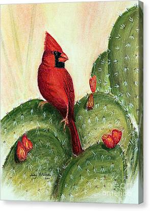 Cardinal On Prickly Pear Cactus Canvas Print by Judy Filarecki