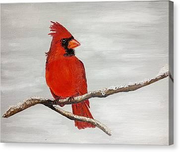 Cardinal Canvas Print by Valorie Cross