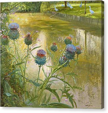 Cardoons Against The Moat  Canvas Print by Timothy Easton