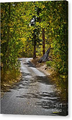 Carefree Highway Canvas Print by Mitch Shindelbower
