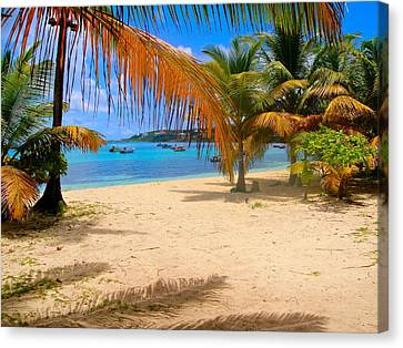 Caribbean Beach In Anguilla Canvas Print