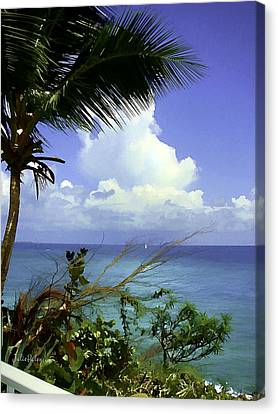 Caribbean Day Canvas Print by Julie Palencia