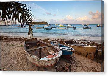 Caribbean Morning Canvas Print