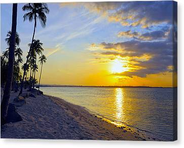 Caribbean Sunset Canvas Print by Stephen Anderson