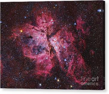 Carina Nebula Canvas Print by Roberto Colombari
