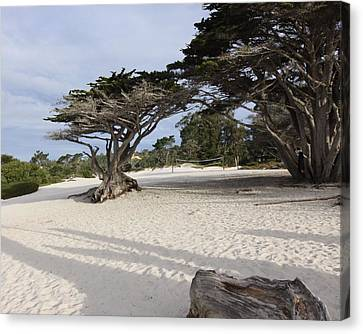 Canvas Print featuring the photograph Carmel by Kandy Hurley