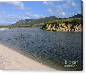 Carmel River Lagoon Canvas Print by James B Toy