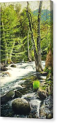Carmel River Upper Watershed Canvas Print by Logan Parsons