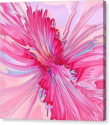 Carnation Pink Canvas Print by Anastasiya Malakhova