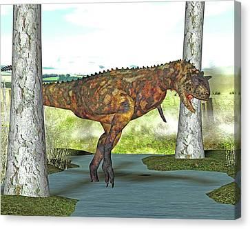 Carnotaurus Dinosaur Canvas Print by Friedrich Saurer