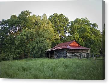 Carolina Horse Barn Canvas Print