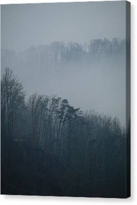 Carolina Winter #1 Canvas Print by Jp Grace