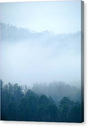 Carolina Winter Number Two Canvas Print by Jp Grace