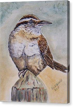 Carolina Wren Canvas Print by Richard Goohs