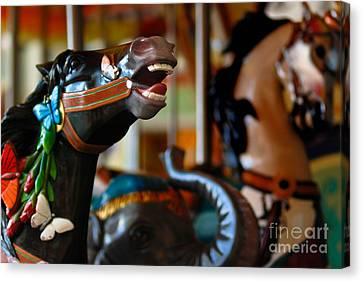 Cruise Ship Canvas Print - Carousel Horses by Amy Cicconi