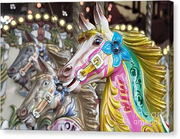 Carousel Horses Canvas Print by Jane Rix