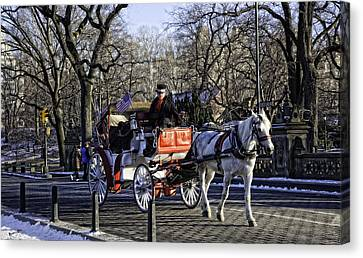 Carriage Driver - Central Park - Nyc Canvas Print by Madeline Ellis