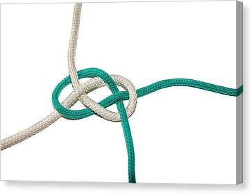 Bonding Canvas Print - Carrick Bend by Photostock-israel