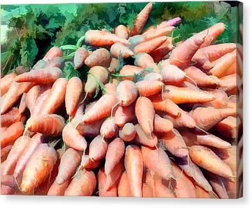 Carrot Mountain Canvas Print by Elaine Plesser