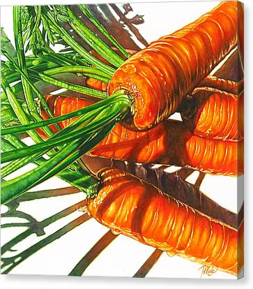 Carrot Top Shadows Canvas Print by Tracy Male