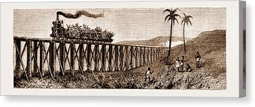 Plantation Canvas Print - Carrying Sugar Cane On The Pioneer Plantation by Litz Collection