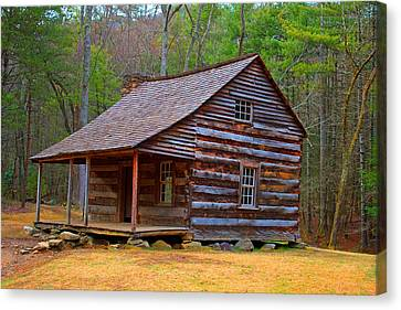 Carter Shields Cabin 2 Canvas Print by Wild Expressions Photography
