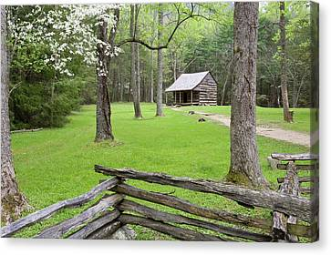 Carter Shields Cabin In Spring, Cades Canvas Print by Richard and Susan Day