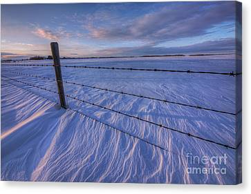 Snow Drifts Canvas Print - Carved By The Wind II by Dan Jurak