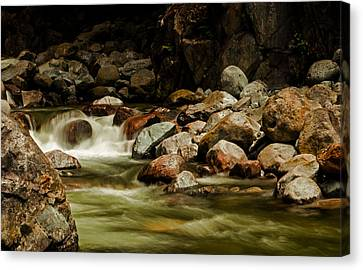 Cascade Creek - Mission B C Canvas Print by Jordan Blackstone