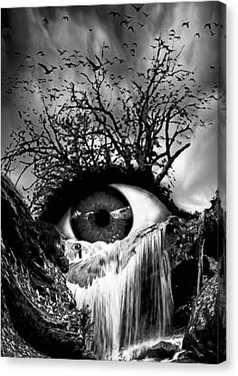 Cascade Crying Eye Grayscale Canvas Print by Marian Voicu