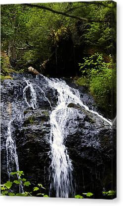 Cascade Falls Canvas Print