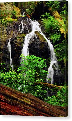 Cascade Falls, Moran State Park, Orcas Canvas Print by Michel Hersen