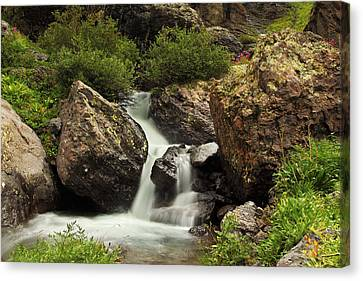 Canvas Print featuring the photograph Cascade In Lower Ice Lake Basin by Alan Vance Ley