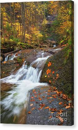 Cascade In The Glen Canvas Print