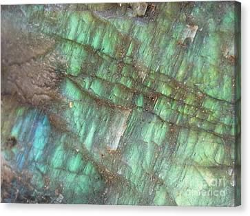 Cascade Of Green Canvas Print by Agnieszka Ledwon