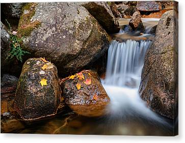 Cascade On Jordan Stream Canvas Print by Michael Blanchette