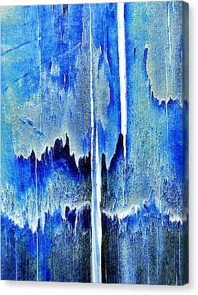 Cascade Canvas Print by Tom Druin
