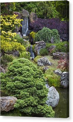 Cascade Waterfall - Japanese Tea Garden Canvas Print by Adam Romanowicz